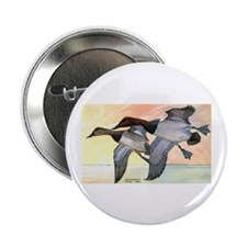 """Canvasback Duck 2.25"""" Button (10 pack)"""