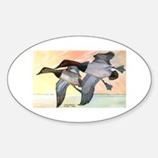 Canvasback Duck Oval Decal