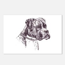 Realistic Boxer Dog Postcards (Package of 8)