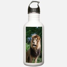 Regal Lion Water Bottle