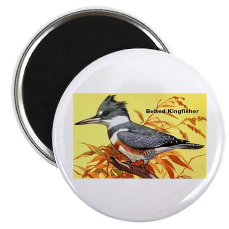"Belted Kingfisher Bird 2.25"" Magnet (10 pack)"