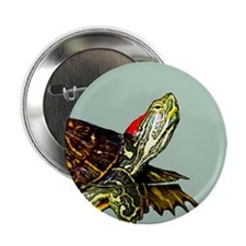 """Sassy Red Eared Slider Turtle 2.25"""" Button"""