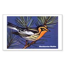 Blackburnian Warbler Bird Rectangle Decal
