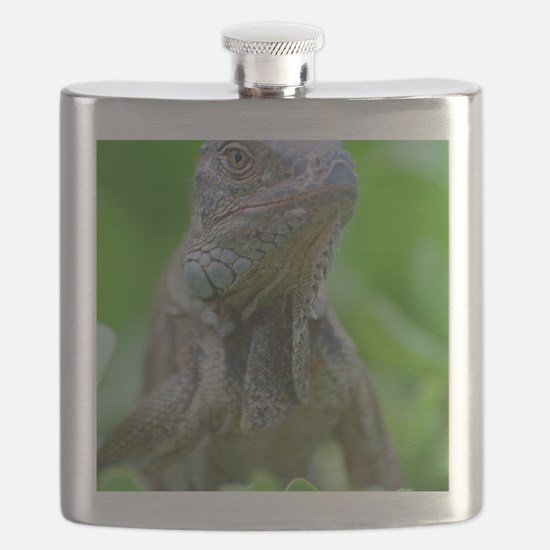 Smug Mug of an Iguana Flask