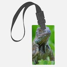 Smug Mug of an Iguana Luggage Tag