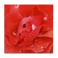 Red Rose Abstract Tile Coaster