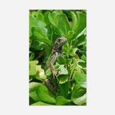Silly Iguana in a Bush Decal
