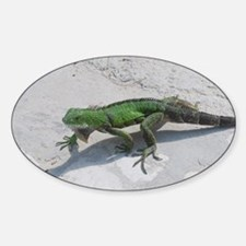 Creeping Green Lizard Decal