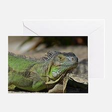 Iguana! Greeting Card