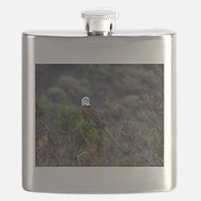 Bald Eagle on a Pine Tree Flask