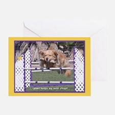 Golden Retriever Nose Birthday Greeting Card