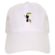 Toucan Bird Baseball Cap
