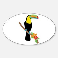 Toucan Bird Decal
