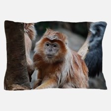 Funny Faced Red Langur Monkey Pillow Case