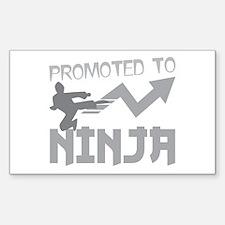 Promoted to NINJA (with cool kicking karate kung f