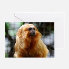 Adorable Red Tamarin Monkey Greeting Card
