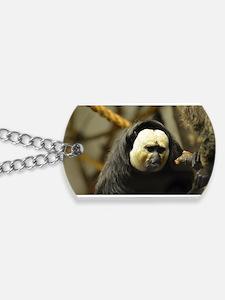 Pale Faced Saki Monkey Dog Tags