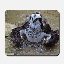 Osprey Bathing Mousepad