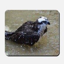 Osprey in the Shallows Mousepad