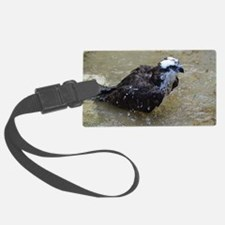 Osprey in the Shallows Luggage Tag
