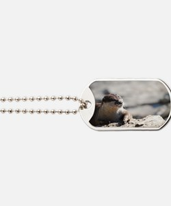 River Otter Hanging Out Dog Tags