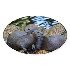 Pair of Cuddling River Otters Decal