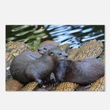 Pair of Cuddling River Ot Postcards (Package of 8)