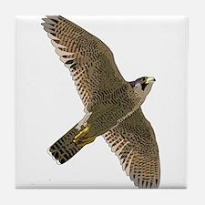Peregrine Falcon Tile Coaster