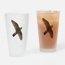 Peregrine Falcon Drinking Glass