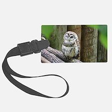Cute Little Owl Luggage Tag