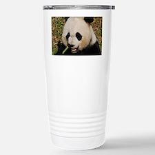 Chinese Panda Bear Eati Travel Mug