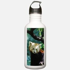 Sweet Red Panda Bear Sports Water Bottle
