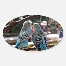 Cuddling Blue Parakeets Decal