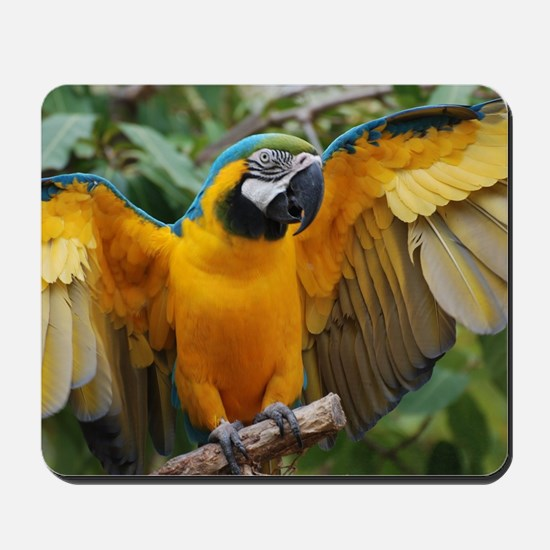 Macaw Wings Mousepad