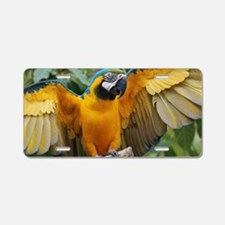 Macaw Wings Aluminum License Plate