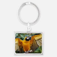 Macaw Wings Landscape Keychain