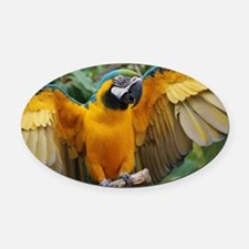 Macaw Wings Oval Car Magnet