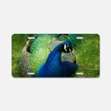 Peafowl Aluminum License Plate