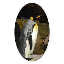 Emperor Penguin Decal