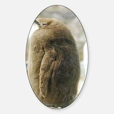 Baby Penguin Sticker (Oval)