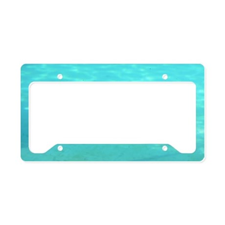 Penguin Swimming Underwater License Plate Holder