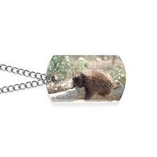 Sleeping Porcupine Dog Tags