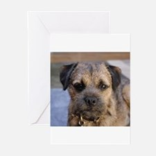border terrier Greeting Cards