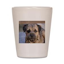 border terrier Shot Glass