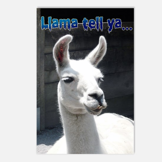 Smiling Llama Postcards (Package Of 8) Postcards (