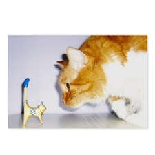 Humorous Cat Postcards (Package of 8)