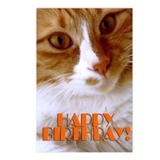Happy Birthday Sweet Cat Postcards (Package Of 8)