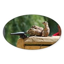 Prairie Dog Soldiers Decal