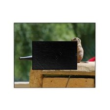 Prairie Dog Soldiers Picture Frame