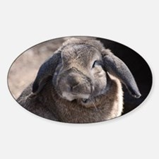 Lop Eared Rabbit Decal
